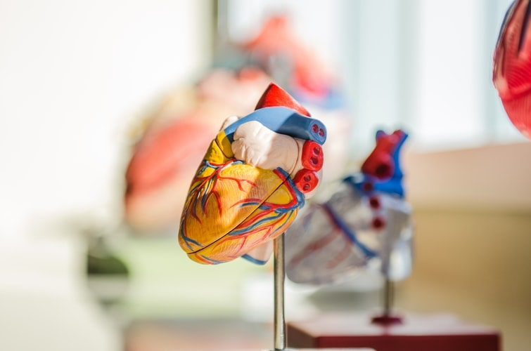 Heart Health Improvement